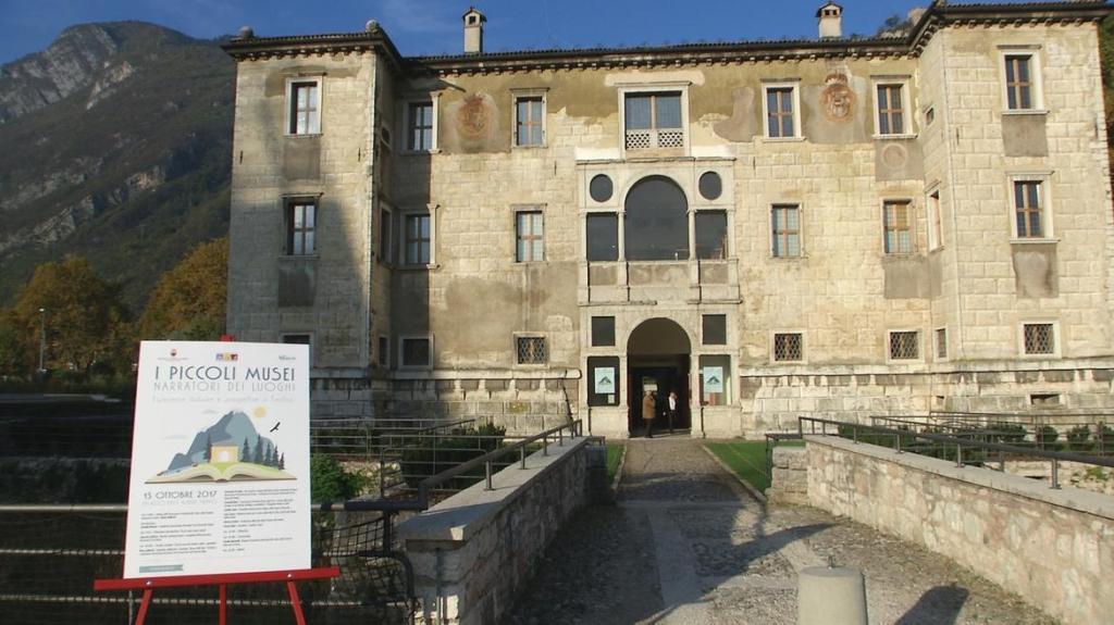 museo-albere-FOTO1-1_imagefullwide-1024x575.jpg