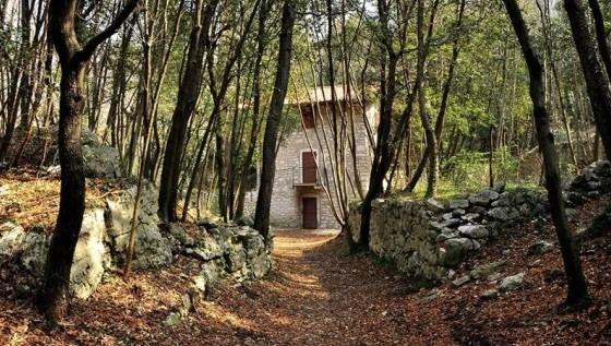 bosco-Caproni.jpg