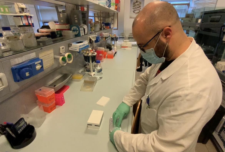 coronavirus esami tamponi 2