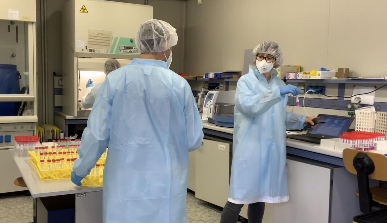 coronavirus esami tamponi