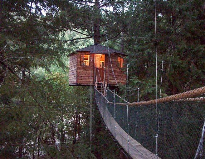 case-su-alberi-hotel-sugli-alberi.jpg