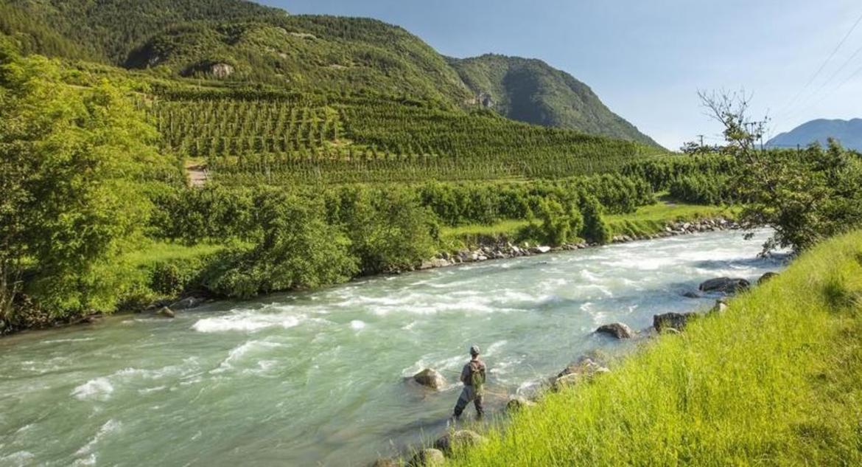 pesca fiume percatore