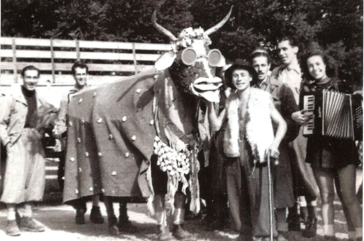 vaca-Copia-1280x846.jpeg