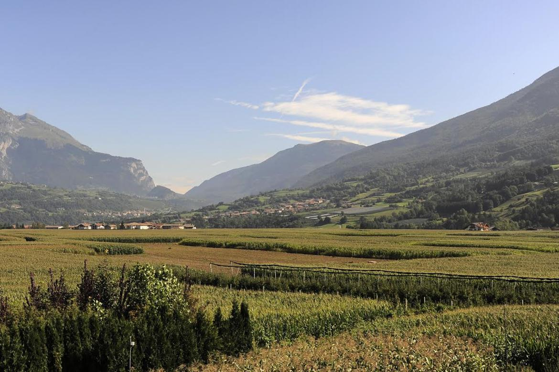 campagna-agricoltura-biologica.jpg