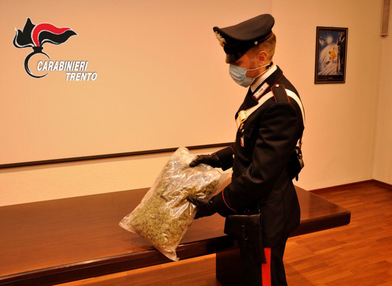 droga-marijuana-carabinieri-1280x936.jpg