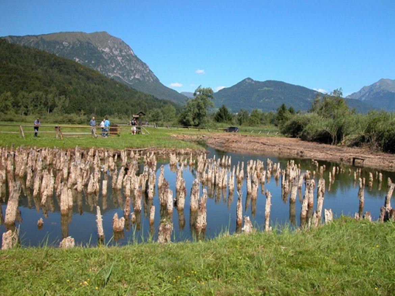 Area-archeologica-Palafitte-di-Fiave.jpg
