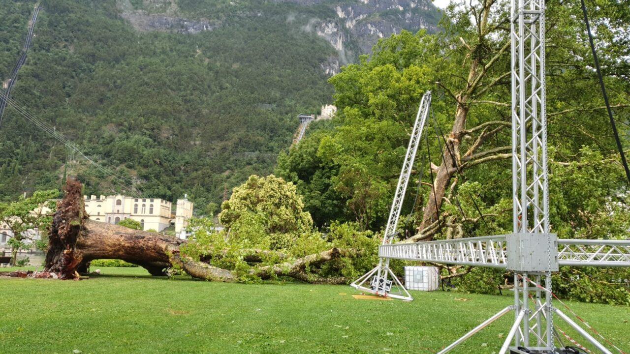 Parco della Rocca