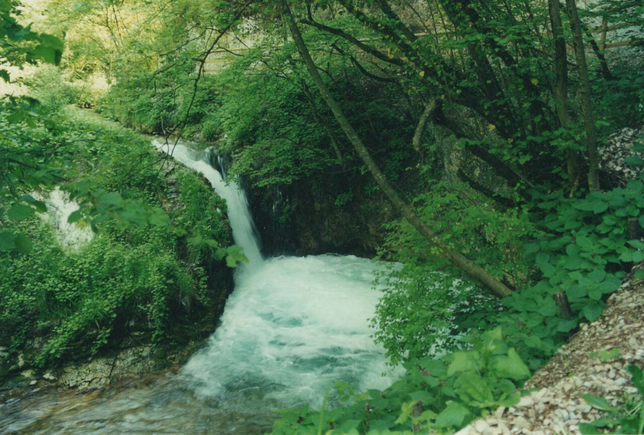 calavino-sentiero-5-1280x865.jpeg