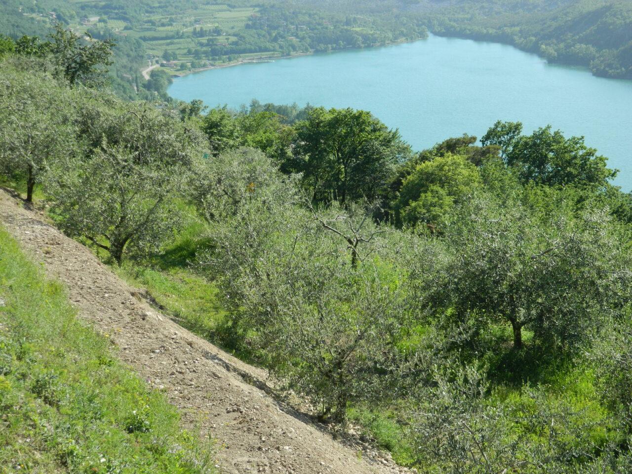 La campagna a monte del lago di Cavedine